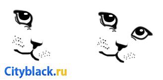 Как нарисовать кошку? 10 простых шагов