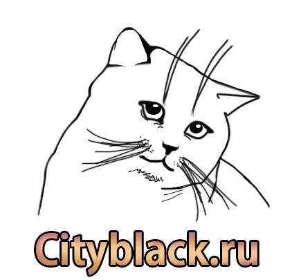 как нарисовать кошку, кот и котенок, рисуем котят