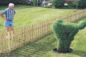 Как ужиться с соседями? Если они тебя раздражают