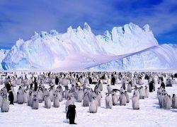 Почему на Южном полюсе нет времени?